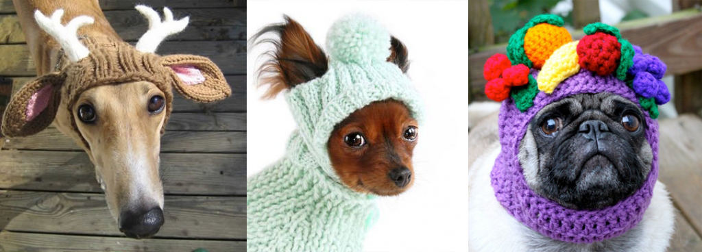 knitting-hat-for-dogs