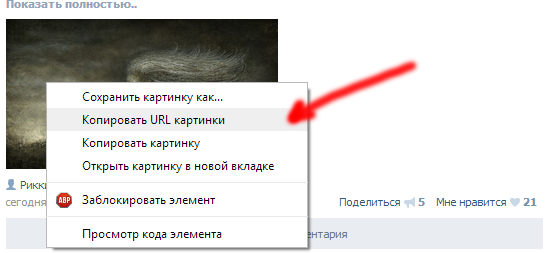 copy-URL-picture-skopirovat-url-kartinki