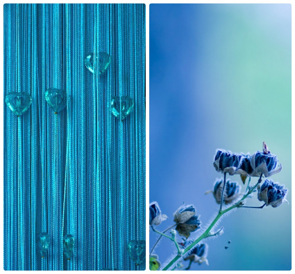 collage-blue-foto
