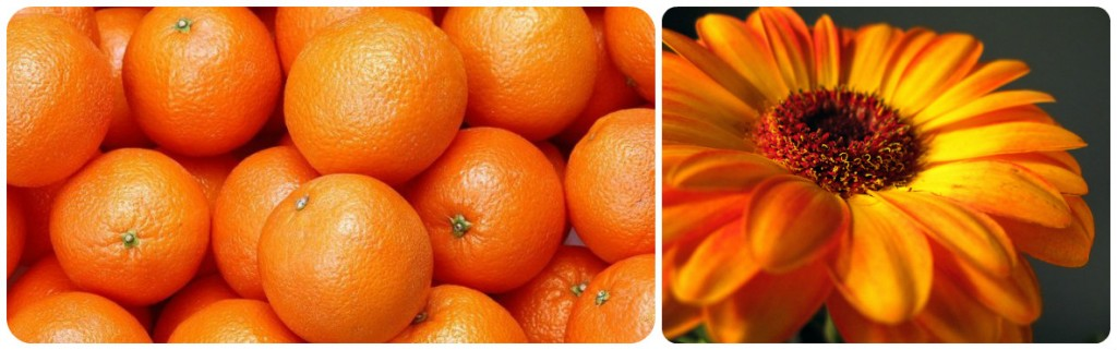 collage-orange-foto