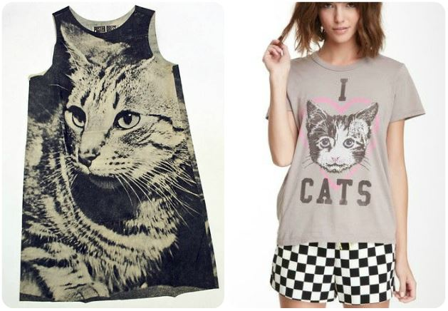 cat-on-t-shirt